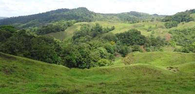 Paysage vert et vallonné sur la route du parc du volcan Tenorio (Costa Rica)