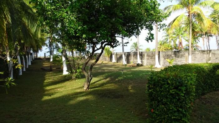 Le jardin - El Roble (Costa Rica)