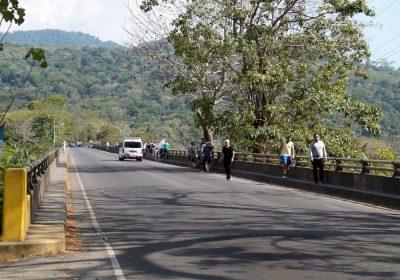 Le pont des crocodiles de Tarcoles - Costa Rica