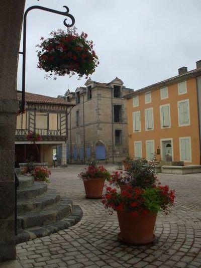 Le Château Comtal - Damazan