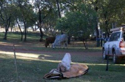 El Questro - Kimberley