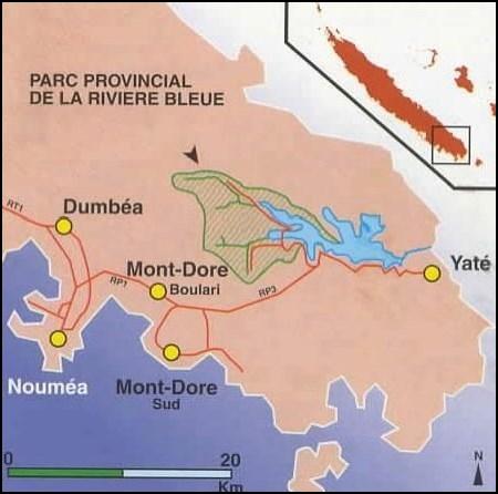 Le Parc Provincial de la Rivière Bleue - Nouvelle Calédonie
