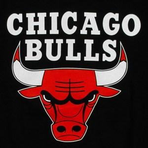 Chicago Bulls - USA