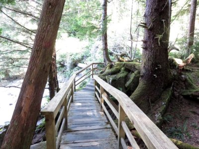 Tofino - île de Vancouver (Canada)