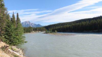 La rivière Athabasca au Wapiti Campground - Jasper (Canada)