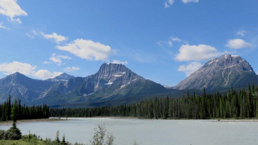 La rivière Athabasca - La route des Glaciers - Rocheuses canadiennes