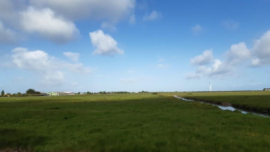 Sur la route entre Les Moutiers-en-Retz et Notre Dame-de-Monts
