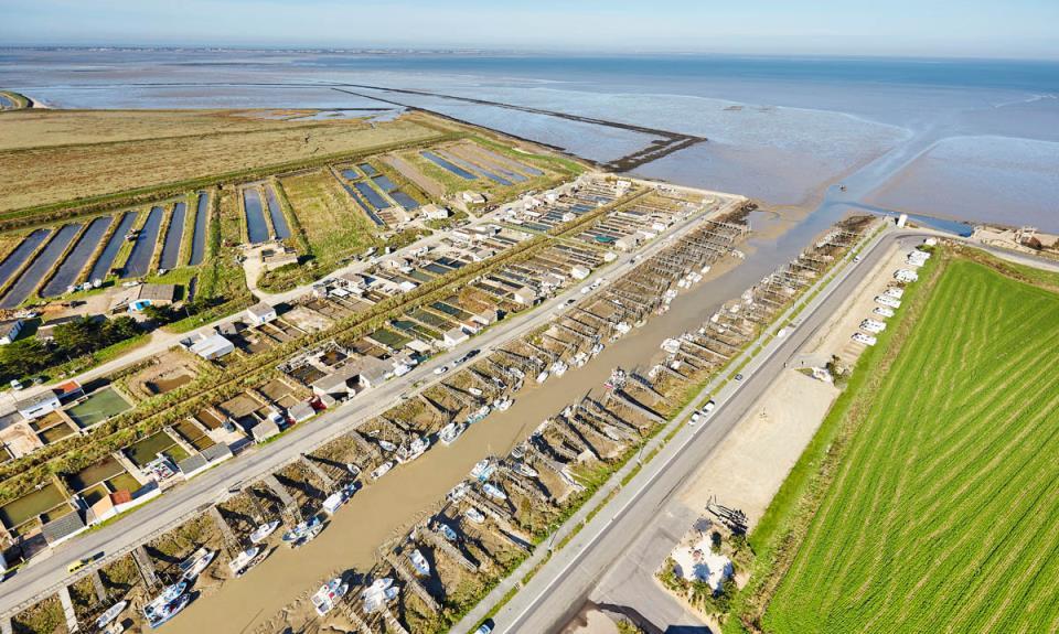 Vue aérienne du port du Bec - Bouin