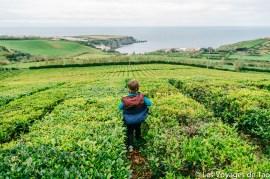 Les voyages de Tao Sao Miguel Açores-67