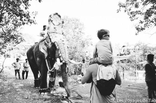 Les voyages de Tao voyage en Inde en famille-154