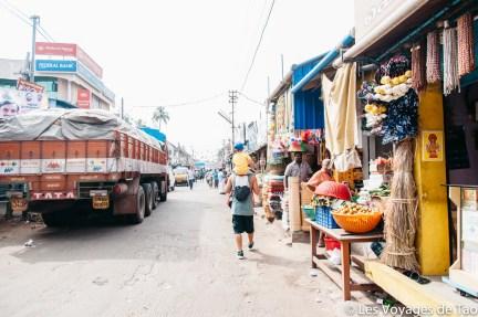 Les voyages de Tao voyage en Inde en famille-212