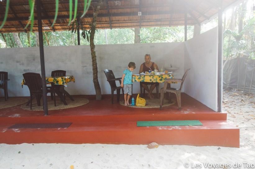 Les voyages de Tao voyage en Inde en famille-56
