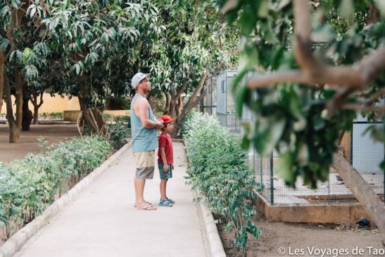 Les voyages de tao Sénégal-3