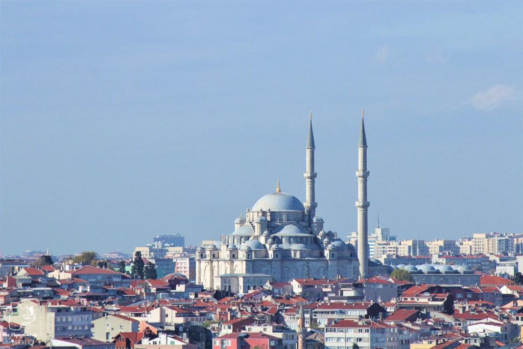 La mosquée Suleymaniye à Istanbul en Turquie dans mon article Mon itinéraire en Turquie: Que faire, voir et visiter en 7 jours #turquie #voyage #asie #cappadoce #istanbul