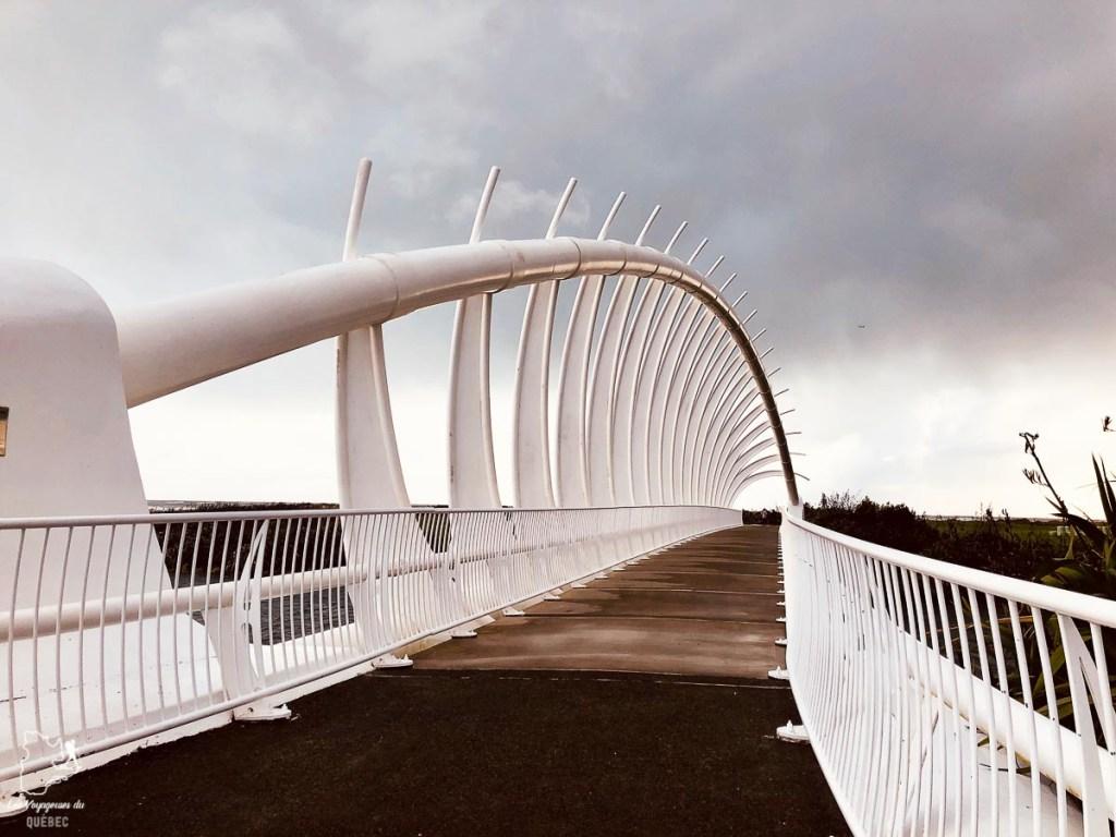 Te Wera Wera bridge à New Plymouth en Nouvelle-Zélande dans notre article Road trip en Nouvelle-Zélande : Mes 5 semaines à vivre sur la route #nouvellezelande #roadtrip #oceanie #voyage