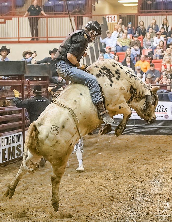 Bull riding au rodéo de Calgary dans notre article Le Stampede de Calgary : Visiter Calgary au Canada pendant le grand rodéo #stampede #rodeo #calgary #alberta #canada #festival