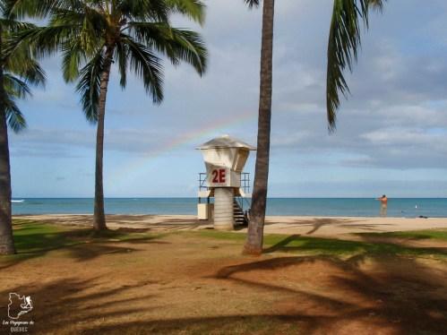 Le North Shore à Oahu à Hawaii dans notre article Waikiki à Hawaii en 10 coups de coeur : destination plage et surf d'Oahu #waikiki #hawaii #oahu #voyage #surf #plage