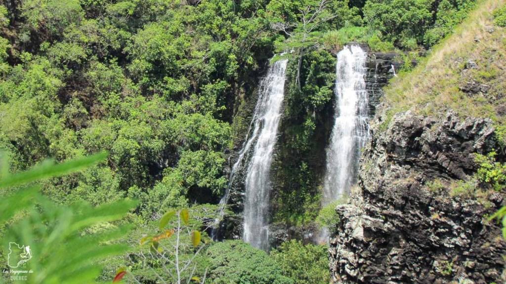 Opaeka'a Fall à visiter à Kauai à Hawaii dans notre article sur Visiter Kauai à Hawaii : 12 incontournables à faire sur l'île de Kauai #kauai #hawaii #voyage #usa #ile #iledekauai #kauaihawaii #Opaekaa #chute