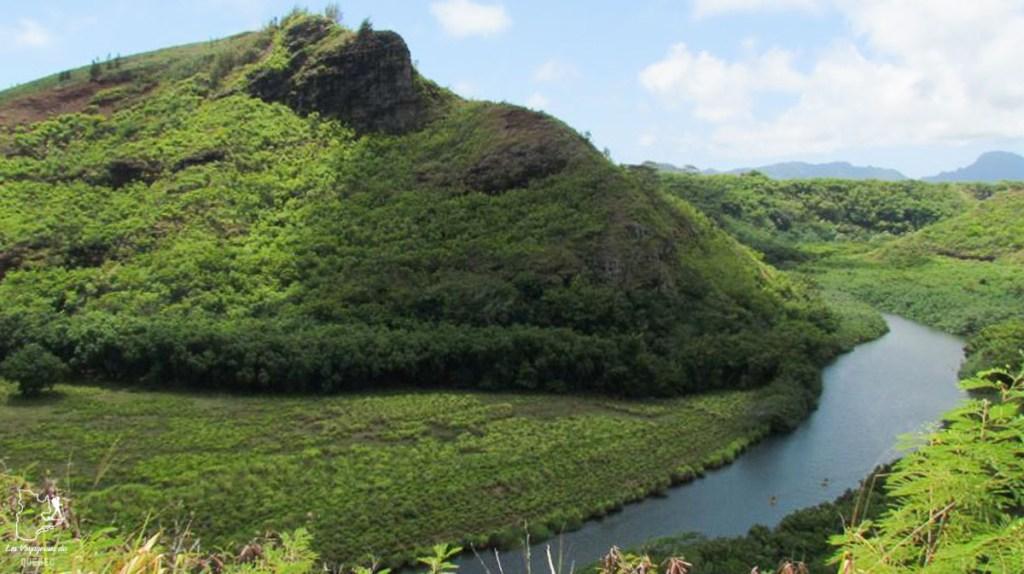 Wailua State Park à visiter à Kauai à Hawaii dans notre article sur Visiter Kauai à Hawaii : 12 incontournables à faire sur l'île de Kauai #kauai #hawaii #voyage #usa #ile #iledekauai #kauaihawaii #Wailua