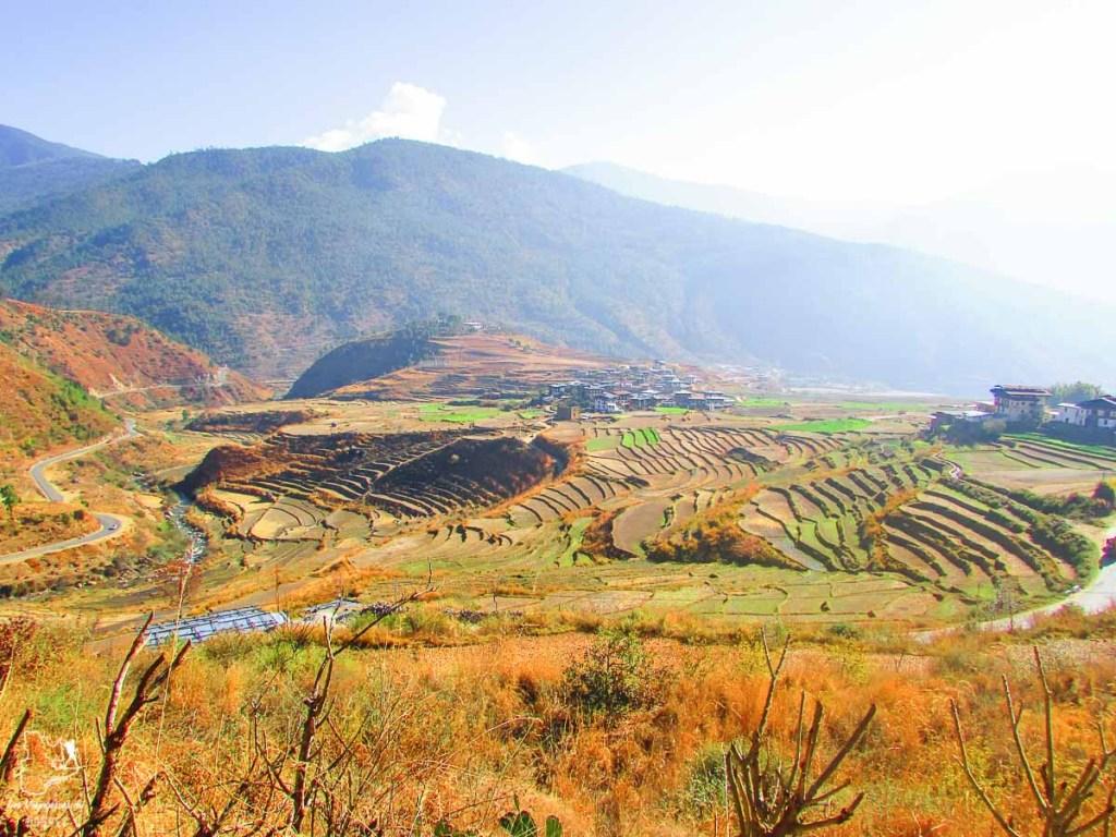 Visiter le Bhoutan naturel, dont les rizières de Bumthang dans notre article Visiter le Bhoutan : Voyage dans ce petit royaume enchanteur hors du temps #bhoutan #asie #voyage