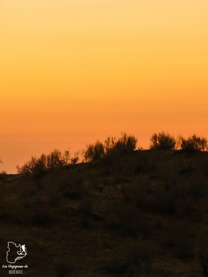Coucher de soleil dans le désert du Kyzyl Koum en Ouzbékistan dans notre article Visiter l'Ouzbékistan : 7 incontournables à voir lors d'un voyage en Ouzbékistan #ouzbekistan #asiecentrale #routedelasoie #voyage #desert #kyzylkoum