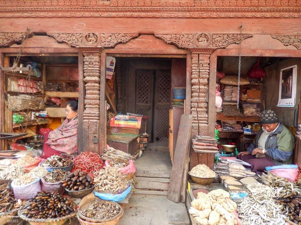 Au Népal, pays visité lors de mon tour du monde d'un an dans notre article Mon tour du monde d'un an à 50 ans : le voyage d'une vie #tdm #tourdumonde #voyage #voyageunan #senior