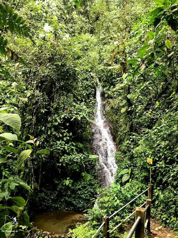 Cascade à Mindo en Équateur dans notre article Mindo en Équateur : Que faire et voir dans ce lieu à la faune et la flore unique #equateur #mindo #ameriquedusud #voyage