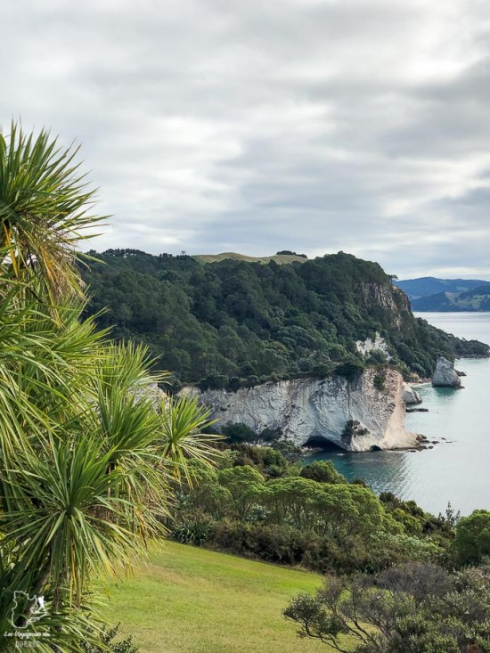 Trek en Nouzelle-Zélande dans notre article Trek en Nouvelle-Zélande : 5 randonnées à faire sur l'île du nord en Nouvelle-Zélande #trek #randonnee #iledunord #nouvellezelande #oceanie #voyage