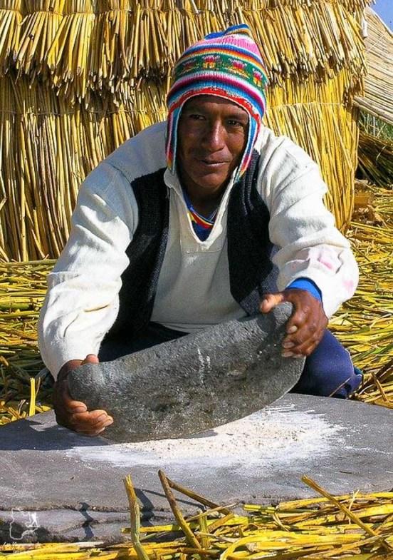 Les bourgeons de totora du lac Titicaca sont comestibles dans notre article Le lac Titicaca au Pérou : Mon expérience sur 3 îles et dans une famille locale #perou #lactiticaca #titicaca #voyage #ameriquedusud