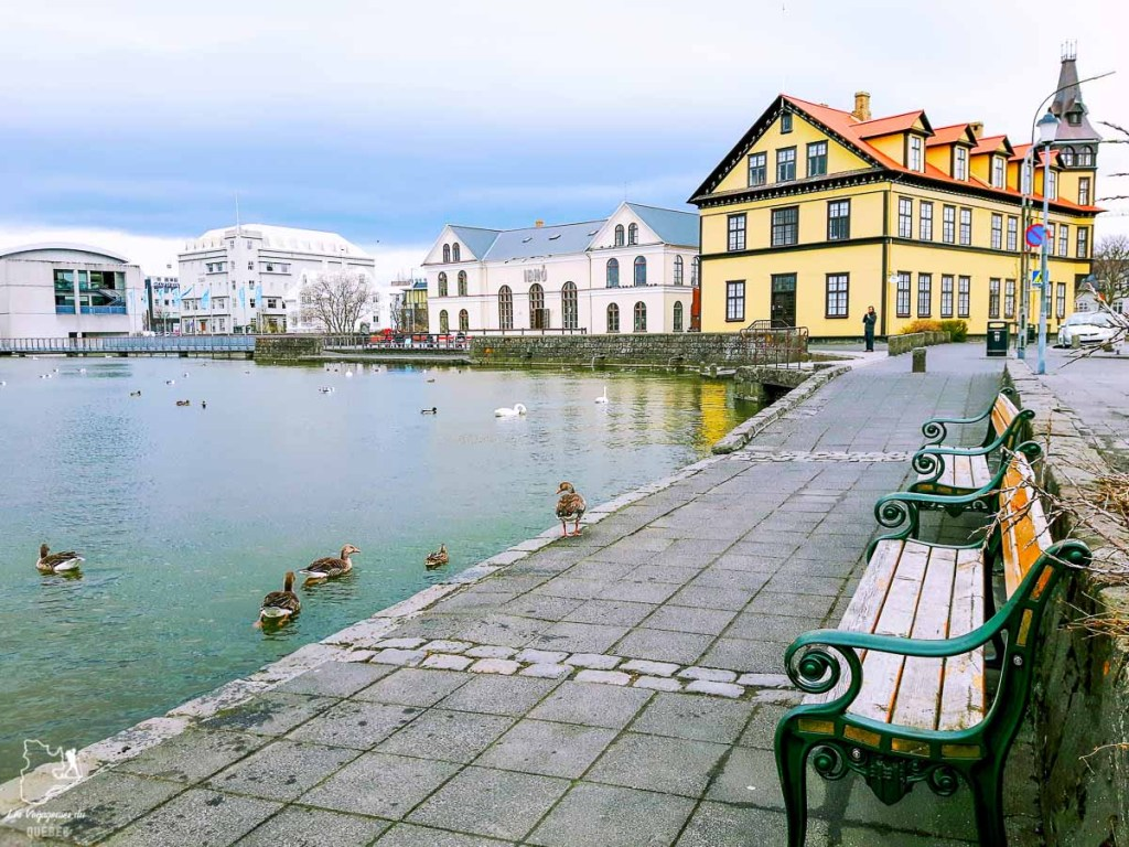 Balade autour du lac Lac Tjörnin à Reykjavik dans notre article Une semaine en Islande : Mon expérience à visiter l'Islande en solo #islande #unesemaine #voyage #europe #voyageensolo