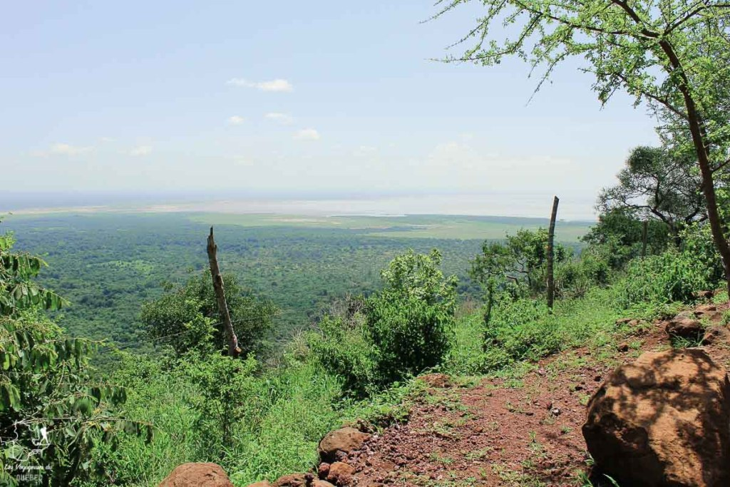 Parc national du Lake Manyara en Tanzanie dans notre article Safari au Kenya et en Tanzanie : comment l'organiser et s'y préparer #kenya #tanzanie #safari #afrique #voyage