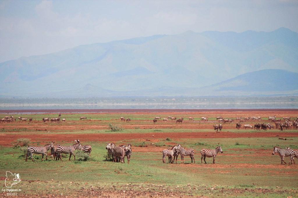 Le Mont Meru en Tanzanie dans notre article Safari au Kenya et en Tanzanie : comment l'organiser et s'y préparer #kenya #tanzanie #safari #afrique #voyage