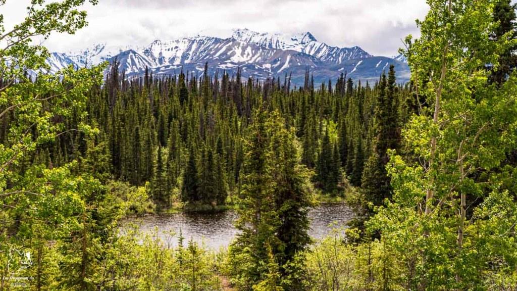 Région de Kluane au Yukon dans notre article Mon road trip au Yukon au Canada : 12 jours de liberté en truck camper au gré du vent #yukon #canada #roadtrip #voyage