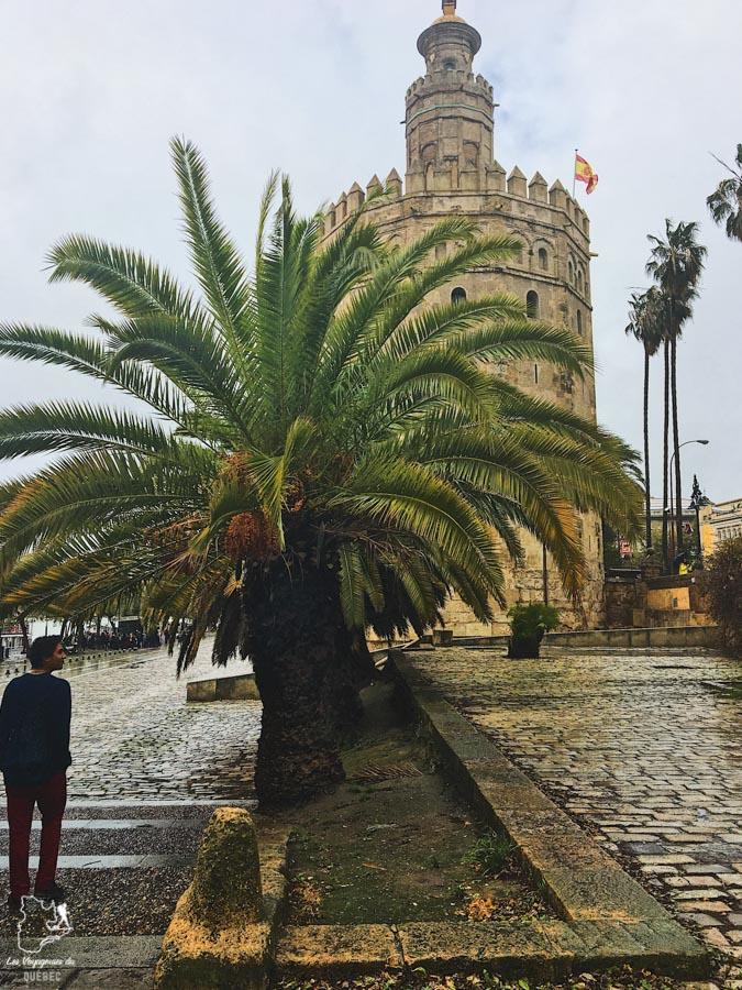 Tour de l'Or à Séville dans notre article Voyage au sud de l'Espagne : Itinéraire de 2 semaines à visiter en mode backpack #espagne #sudespagne #malaga #seville #grenade #europe #voyage #itineraire #backpack
