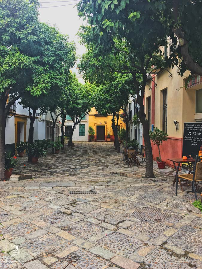 Quartier Santa Cruz de Séville dans notre article Voyage au sud de l'Espagne : Itinéraire de 2 semaines à visiter en mode backpack #espagne #sudespagne #malaga #seville #grenade #europe #voyage #itineraire #backpack