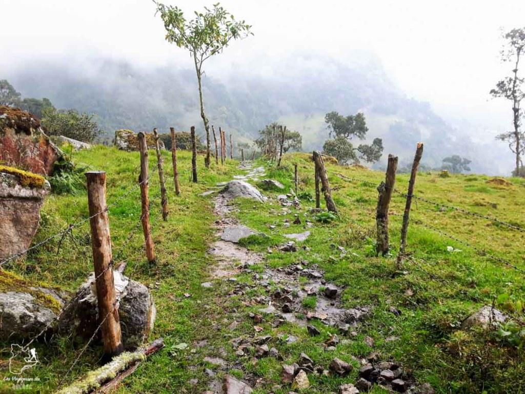 Randonnée à la cascade de Chorrera dans la réserve de Choachi en Colombie dans notre article Voyage en Colombie : 3 semaines à voyager seule en Colombie à Bogotá, Carthagène et San Andrés #colombie #ameriquedusud #voyagerseule #voyage #bogota #carthagene #sanandres