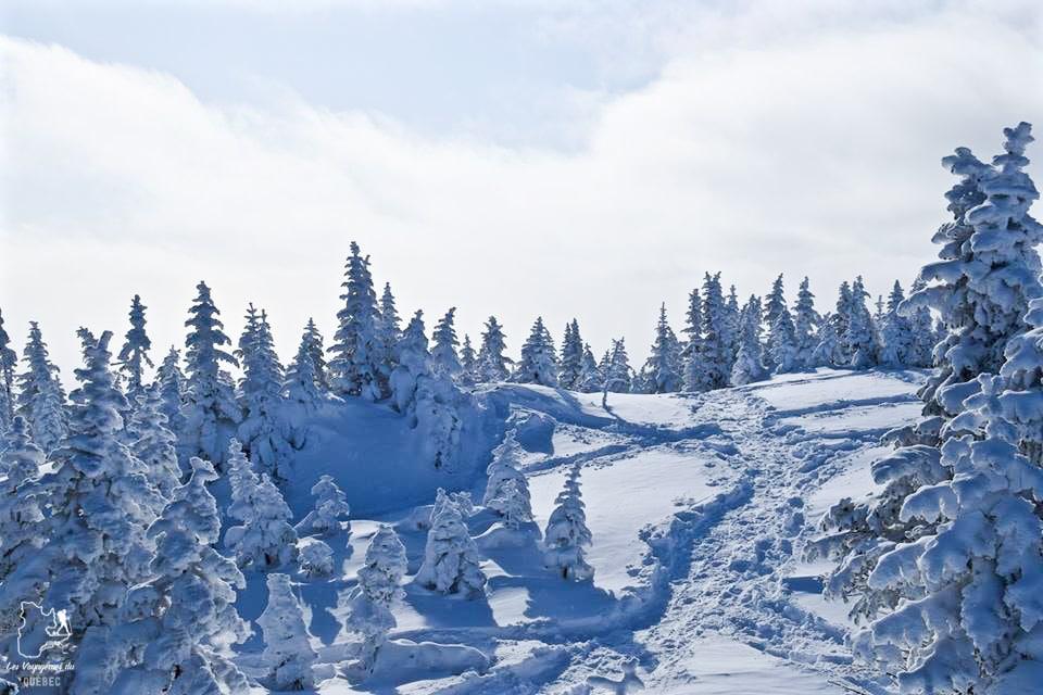 Randonnée en raquettes au Mont-Valins dans notre article 10 activités hivernales au Québec : quoi faire au Québec en hiver #hiver #quebec #canada #activites