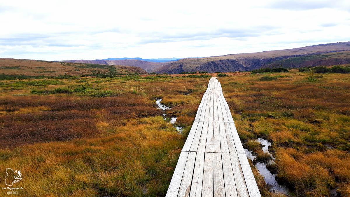 Randonnée au Mont Albert dans notre article 4 randonnées en Gaspésie incontournables du Parc de la Gaspésie et des Chic-Chocs #randonnee #Gaspesie #chicchocs #sepaq #quebec