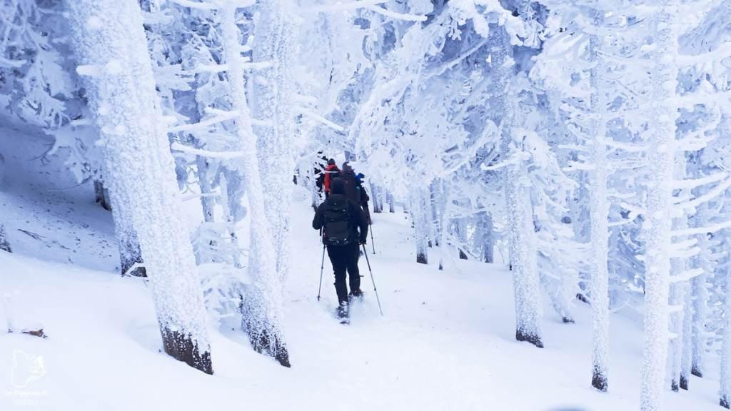 Randonnée en raquette au Mont-Mégantic dans notre article 10 activités hivernales au Québec : quoi faire au Québec en hiver #hiver #quebec #canada #activites