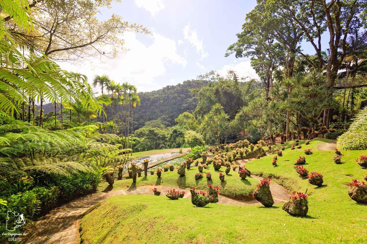 Les Jardins de Balata en Martinique dans notre article Que faire en Martinique : 10 incontournables à visiter sur l'île aux fleurs #martinique #france #caraibes #antilles #amerique #voyage #ile