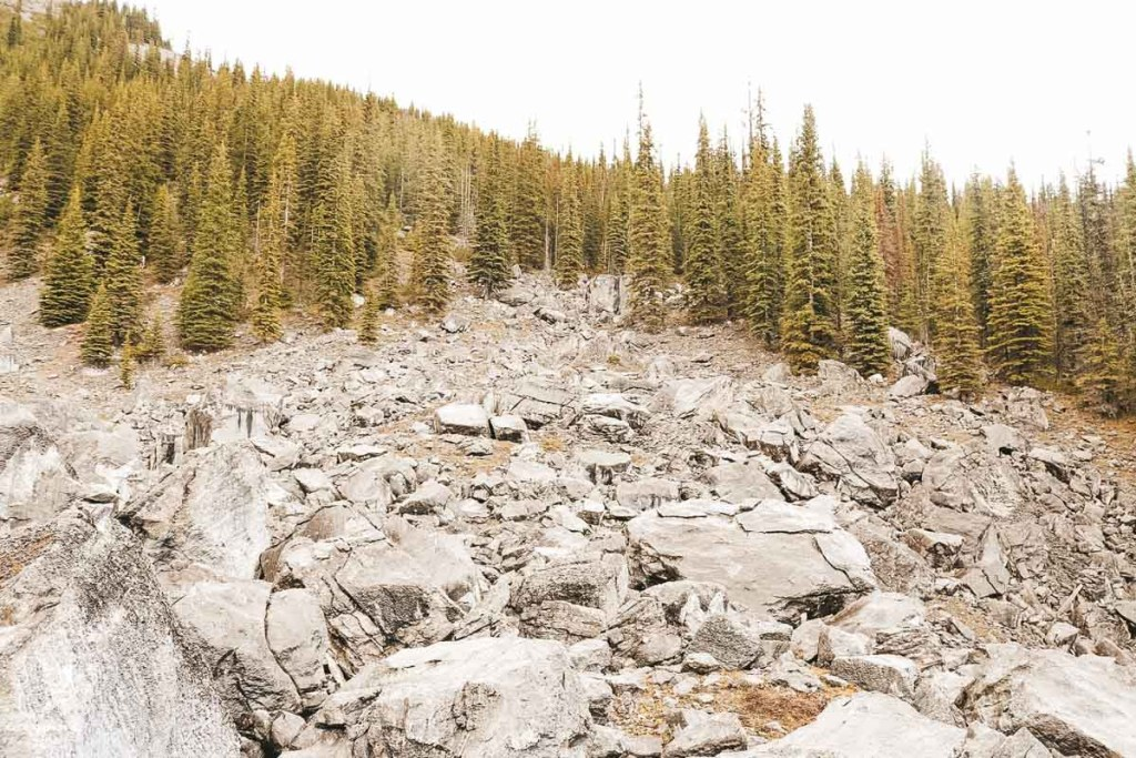 Sortir des sentiers battus lors d'une randonnée dans les Rocheuses dans notre article Visiter le Canada autrement : Ma traversée du Canada hors des sentiers battus #canada #roadtrip