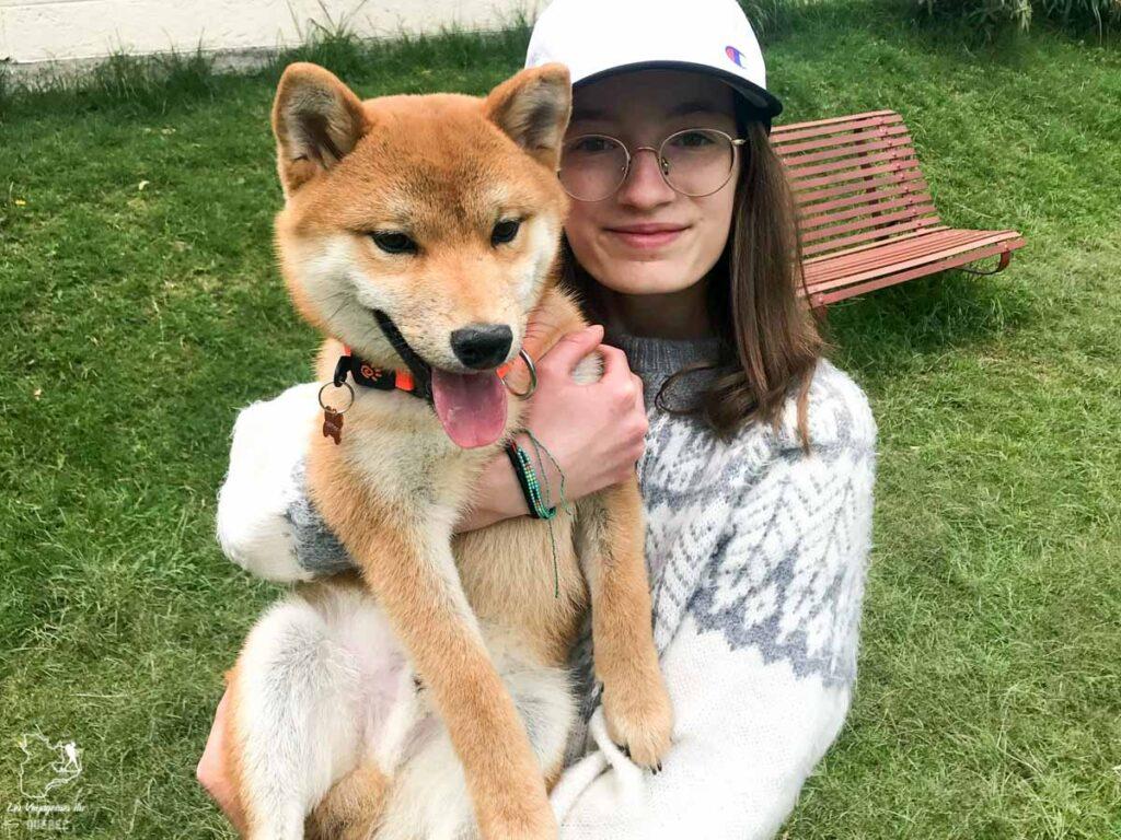 Passer du temps avec le chien avant de le ramener au Canada dans notre article Ramener un chien de l'étranger, quand rien ne se passe comme prévu #chien #voyage #anecdote