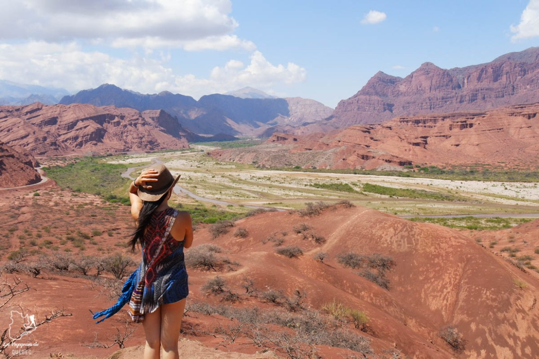 Vallée Calchaquies, Cafayate à Salta en Argentine dans notre article Quitter une vie où il faut plaire à tout prix pour voyager et être enfin libre #voyage #voyageraufeminin #femme #inspiration