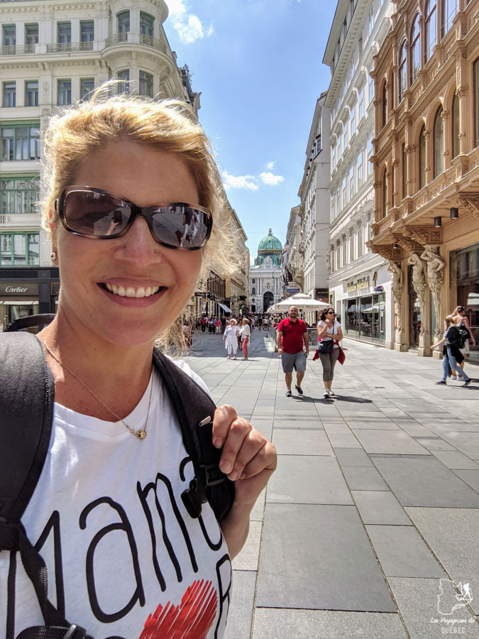 La rue Graben à Vienne dans notre article Visiter Vienne en Autriche : que voir et que faire à Vienne en 5 jours #vienne #autriche #europe #voyage