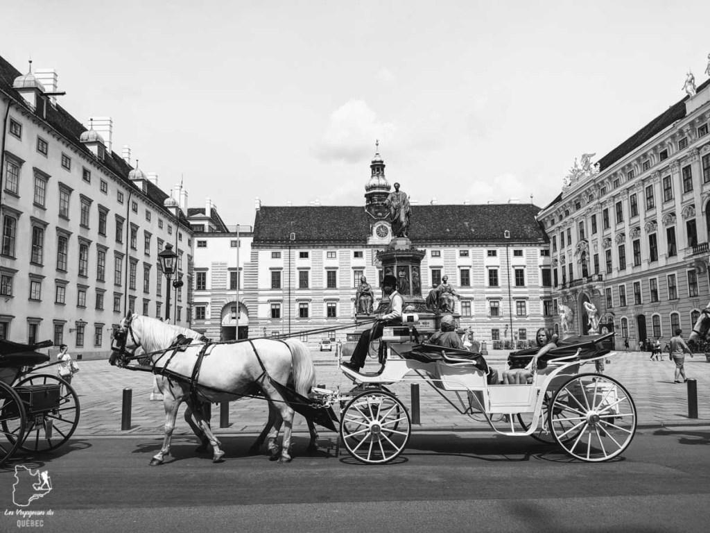 La cour du Palais de Hofburg à Vienne dans notre article Visiter Vienne en Autriche : que voir et que faire à Vienne en 5 jours #vienne #autriche #europe #voyage
