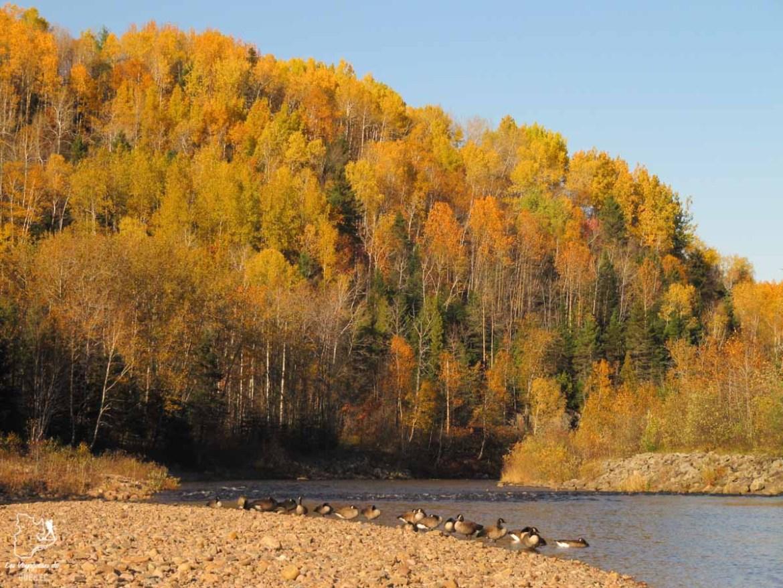 Paysage d'automne à Charlevoix dans notre article Visiter Charlevoix au Québec: Quoi faire dans Charlevoix entre fleuve et montagnes #charlevoix #quebec #voyage #canada
