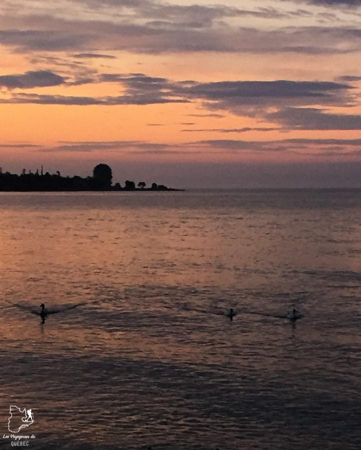 L'Isle-aux-Coudres à Charlevoix dans notre article Visiter Charlevoix au Québec: Quoi faire dans Charlevoix entre fleuve et montagnes #charlevoix #quebec #voyage #canada