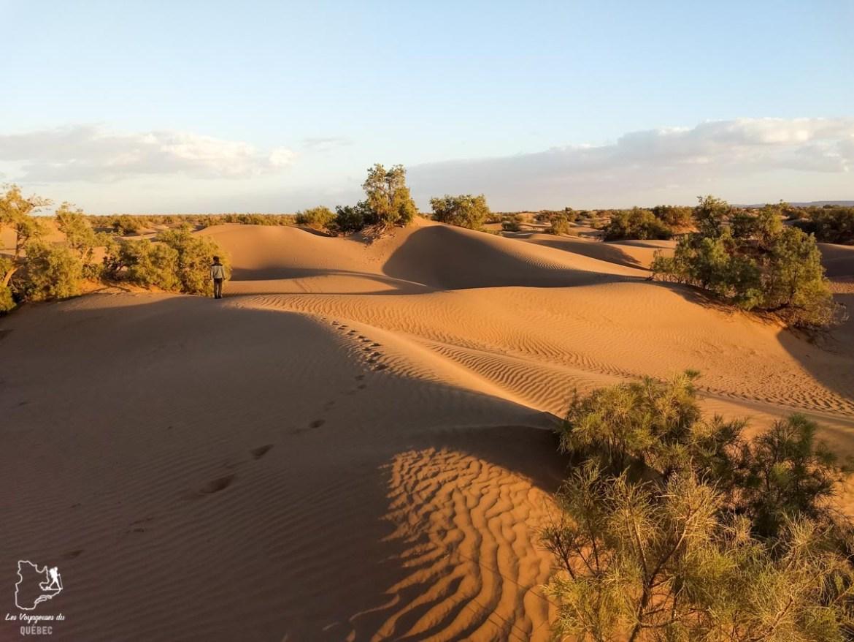 Coucher de soleil sur les Dunes hurlantes dans le Sahara au Maroc dans notre article Trek dans le désert du Maroc : Ma randonnée de 5 jours dans le désert du Sahara #desert #maroc #sahara #randonnee #trek #voyage