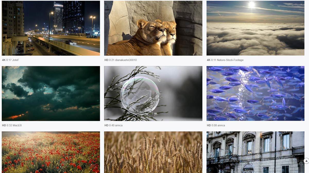 pixabay darmowe filmiki do dowolnego wykorzystania