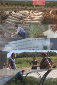 Affiche jeunes agriculteurs